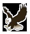 mckinley logo